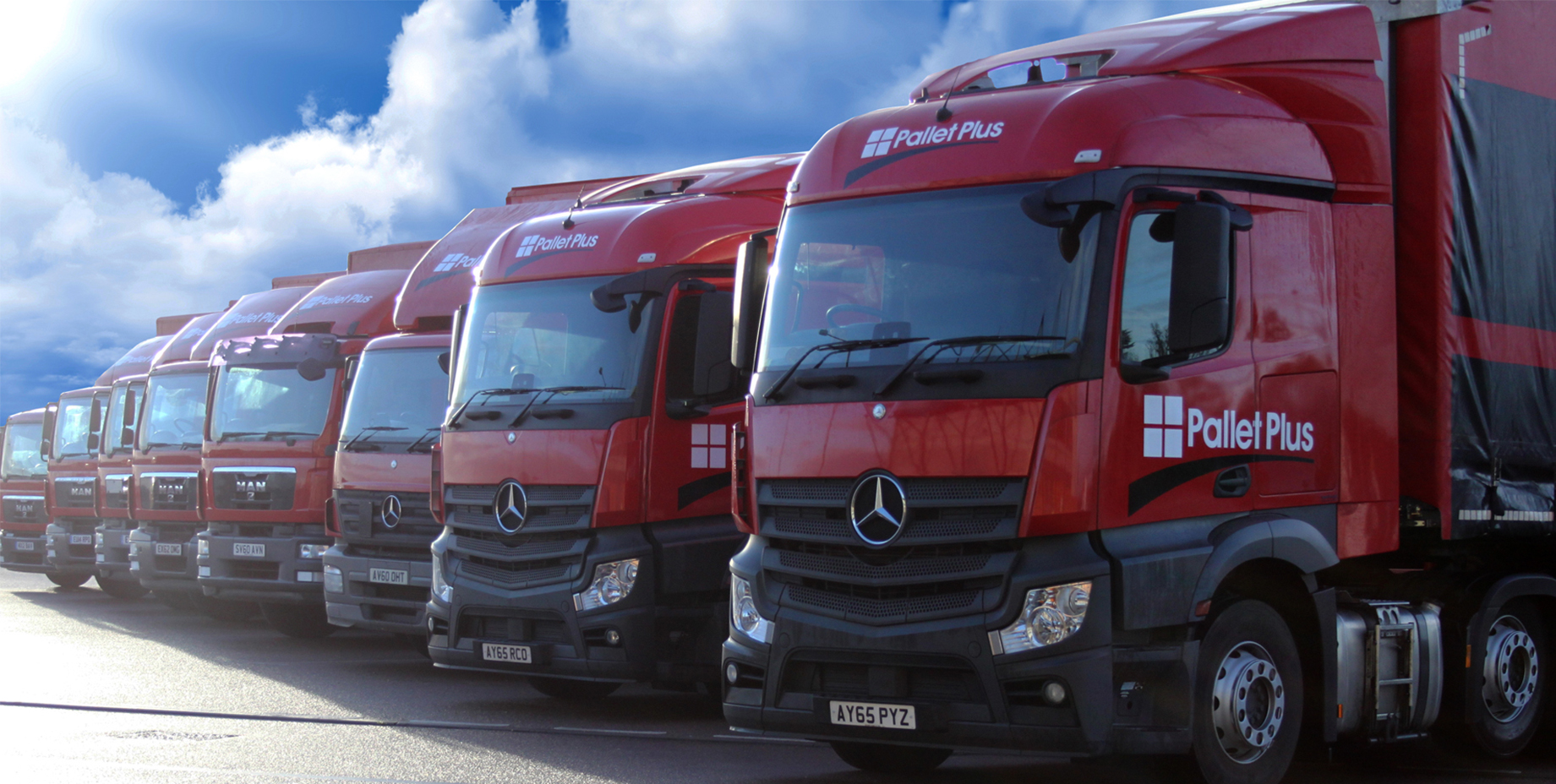 Pallet Freight Distribution Colchester, Chelmsford Pallet